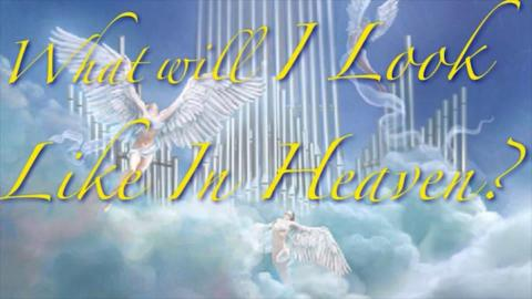 What Will We Look Like in Heaven?